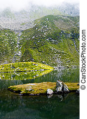 Glacial lake in Fagaras