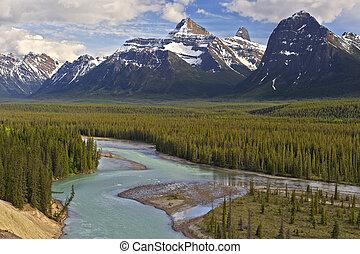 glaciale, valle, jasper parco nazionale, canada