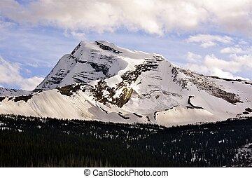 glaciar, cumbre, nevoso