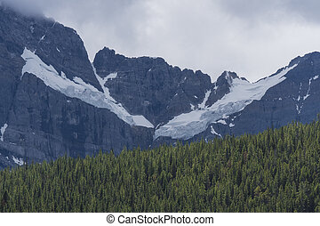 Glacier and Forest