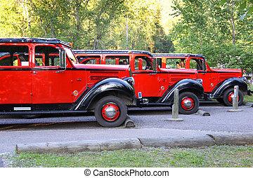 Glacier park busses