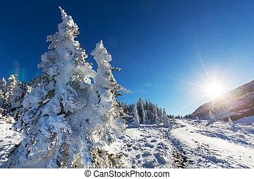 Glacier Park in winter - Glacier National Park, Montana. ...