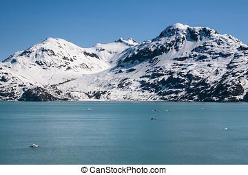 Glacire Bay, Alaska