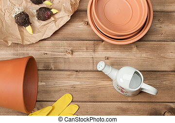 gladíolo, bulbs., can., concept., aguando, potes, fundo, jardinagem, madeira, gloves.