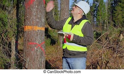 Glad forest engineer with tablet PC near the tree