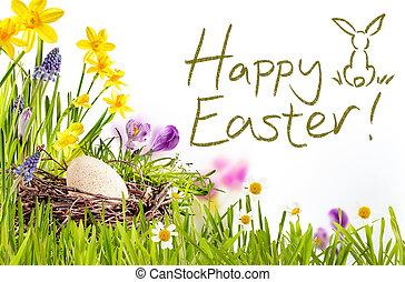 glad påsk, text, med, gräs, och, ägg, gräns