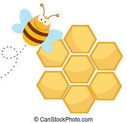 glade, honeycomb, bi