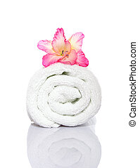 Gladiola and Towel