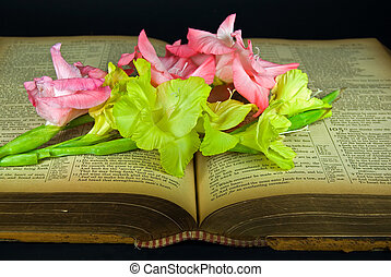 gladiolas on vintage Bible