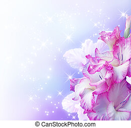 Gladiolus blossom   - Gladiolus blossom and stars