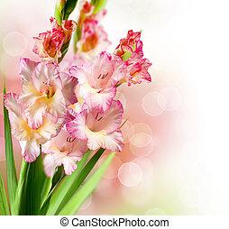 gladiolus, höst, blomma, gräns, design
