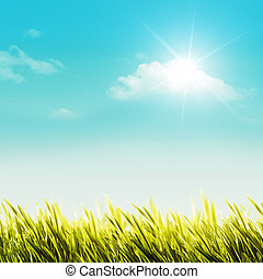 glanzend, zomer dag, op, de, weide, natuurlijke , achtergronden