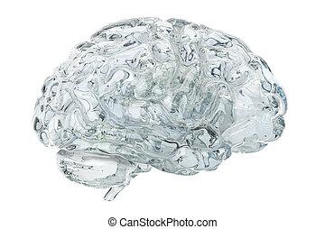 glas, 3d, transparant, hersenen, vertolking
