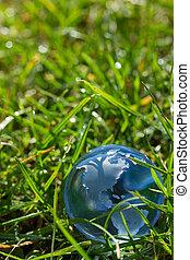 glas globe, gras