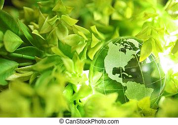 glas globe, in, bladeren
