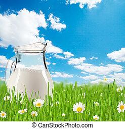 glas, gras, kruik, melk