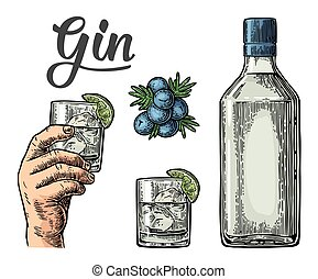 Glass and bottle of gin and branch of Juniper with berries