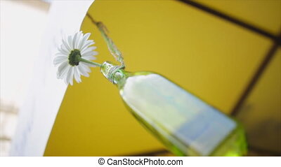 glass bottle with daisies hanging on a thread.