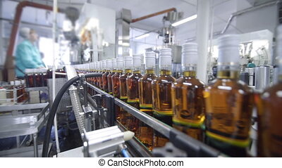 Glass bottles filled with brandy move along conveyor line in modern distillery for bottling alcoholic beverages. Working conveyor machine at factory for production of alcohol
