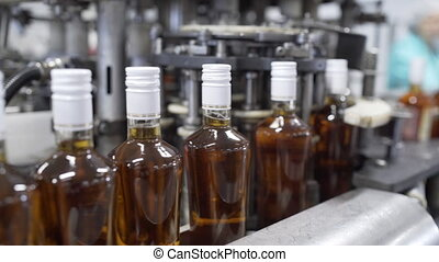 Glass bottles filled with prune tincture move along conveyor line with control panel in modern distillery for bottling alcoholic beverages. Production process of alcoholic beverages in factory.