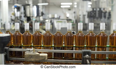 Glass bottles filled with prune tincture move along conveyor line with control panel in modern distillery for bottling alcoholic beverages. Production process ofof alcoholic beverages in factory.