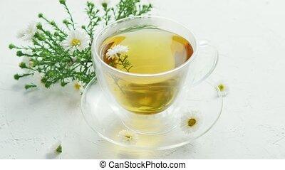 Glass cup of herbal tea - Closeup of glass transparent mug...