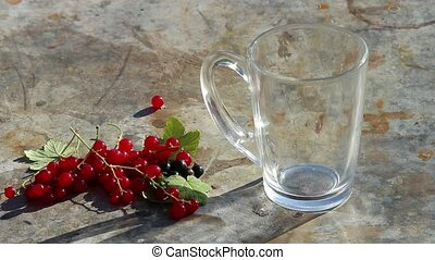 Glass cup with pouring milk and red currants berries in day light