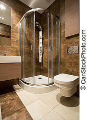 Glass douche and ceramic toilet in luxury bathroom