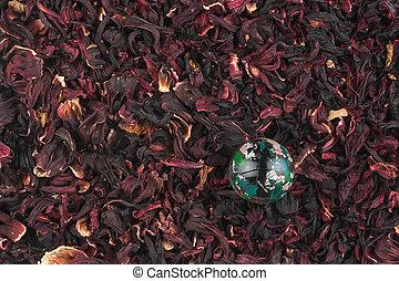 Glass globe lying on hibiscus