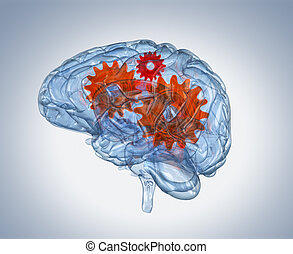 Glass human brain with gears inside