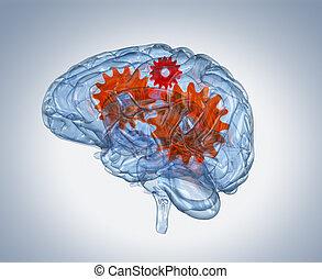 Glass human brain with gears inside