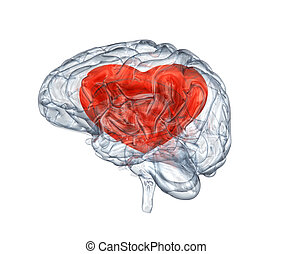 Glass human brain with heart within