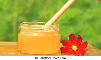 Glass jar with honey and red flower