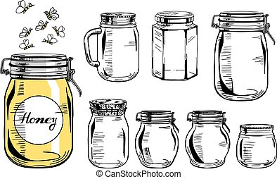 Vector illustration of a glass jars set of different types and forms. Old-fashioned vintage engraving style