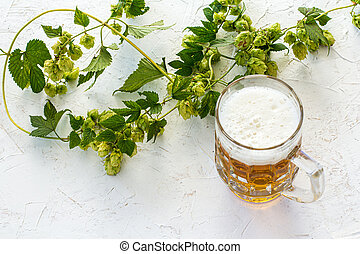 Glass of beer with hop branch on a white background.