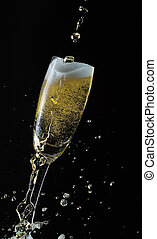 Glass of champagne with splash, isolated on black background