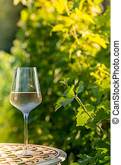 Glass of dry White wine on table in vineyard