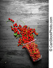 glass of red currants. On black wooden background.