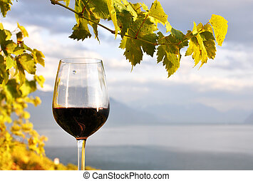 Glass of red wine against Geneva lake. Lavaux region,...