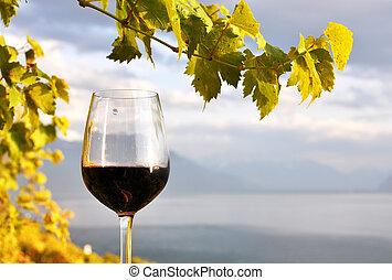 Glass of red wine against Geneva lake. Lavaux region, Switzerland