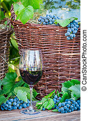 Glass of red wine and a wicker basket with grapes