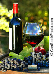 Glass of red wine with bottle and grapes against colorful ...