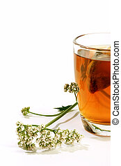 Glass of valerian tea