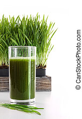Glass of wheatgrass against a white background