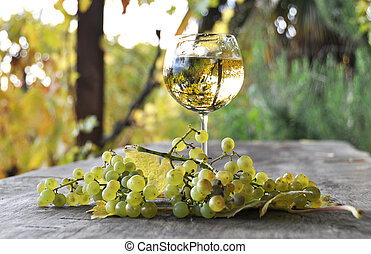 Glass of white wine and a bunch of grapes