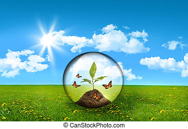 Glass sphere with plant in a field of tall grass