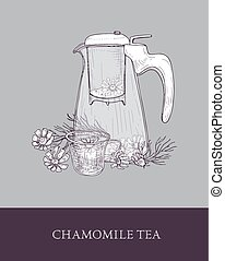 Glass teapot or pitcher with strainer, cup of tea or herbal infusion and chamomile flowers hand drawn in vintage style. Tasty natural infused beverage. Monochrome vector illustration for label, tag.