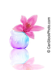 glass vase with an orchid