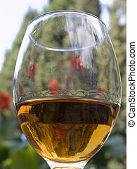 Glass with a wine