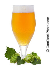 glass with beer and hop